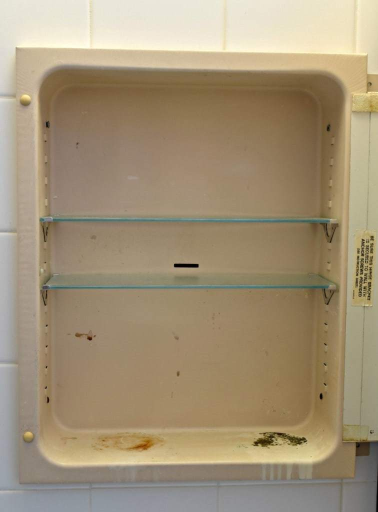 This rusty medicine cabinet was just embarrassing! See how I made it shiny and bright at The Handyman's Daughter!