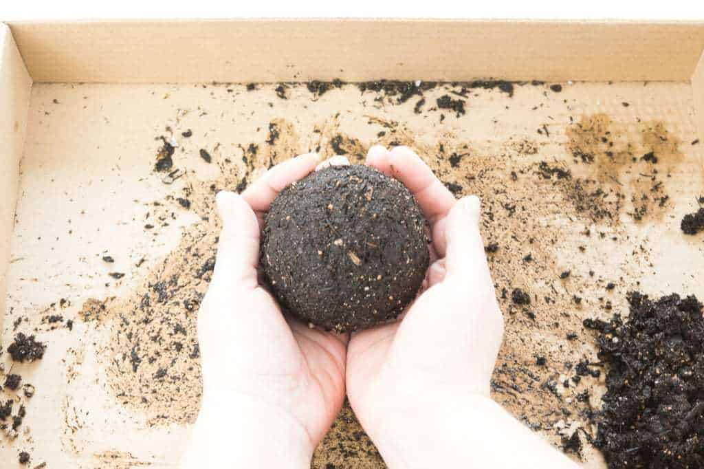 Form a ball with the soil, peat moss and azomite mixture for your kokedama.