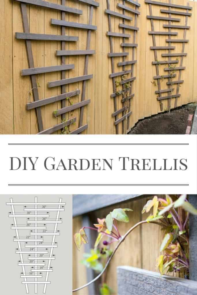 Build this garden trellis and watch your vines climb! Free woodworking plans at The Handyman's Daughter!