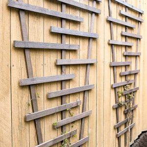 two DIY trellises on fence