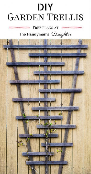 "modern DIY trellis with vines and text overlay reading ""DIY Garden Trellis - free plans at The Handyman's Daughter"""