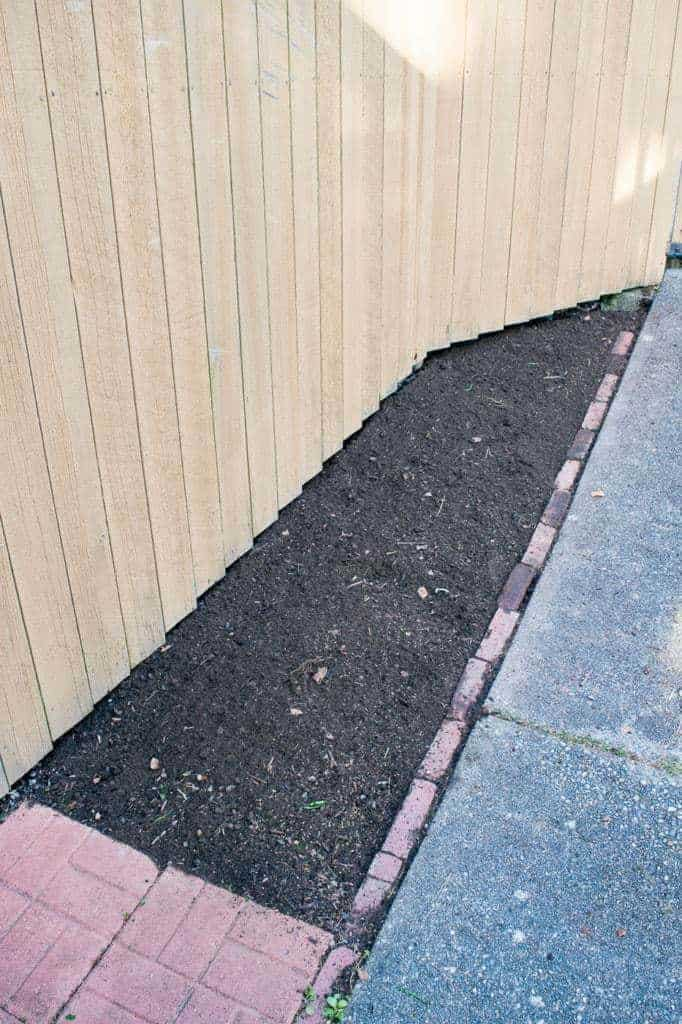 bare garden bed next to concrete path