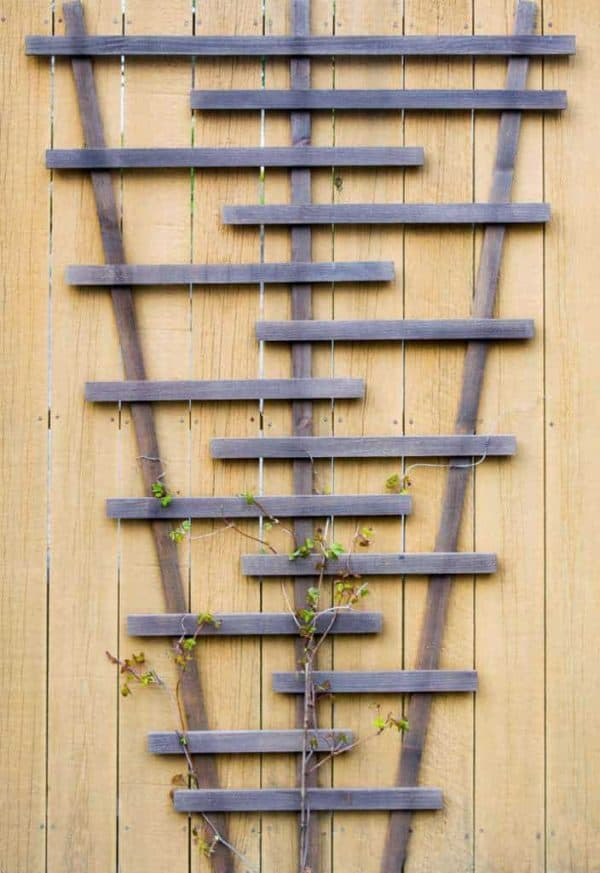 Bring visual interest to a boring, flat fence with a modern garden trellis! Free woodworking plans and tutorial at The Handyman's Daughter!