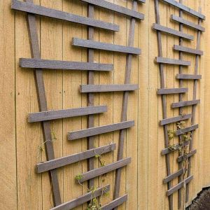 This modern garden trellis is easy to make with a few cedar fence pickets! Get the free woodworking plans at The Handyman's Daughter!