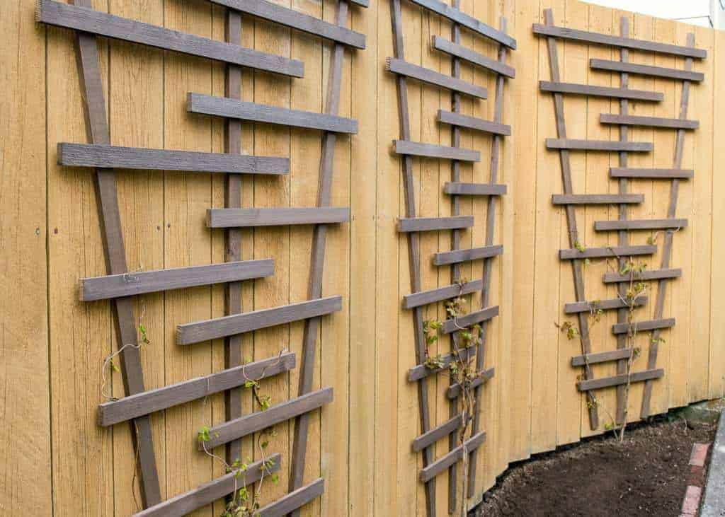 three DIY trellises on fence in front of garden space