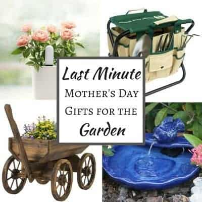 9 Last Minute Mother's Day Gifts for the Garden