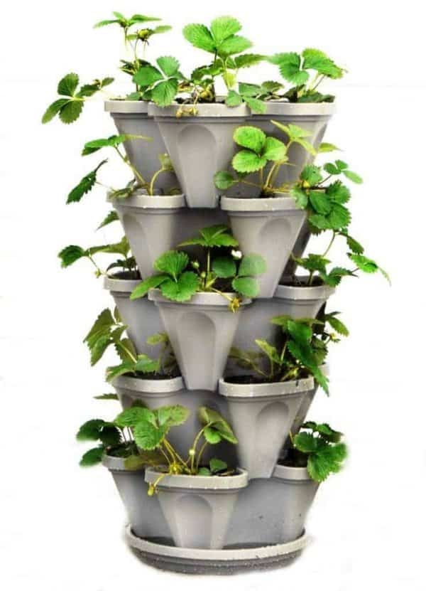 Give Mom this stackable strawberry planter for Mother's Day, and she can grow an entire harvest in a small footprint!