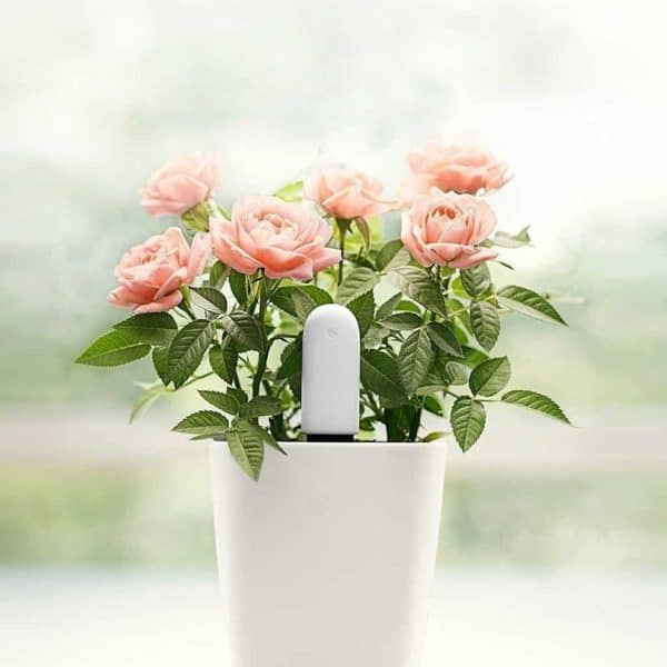 This sensor is the perfect last minute Mother's Day gift for a gardener! It tracks water levels, sunlight, temperature and nutrient levels to give your mom the best flowers in the neighborhood!