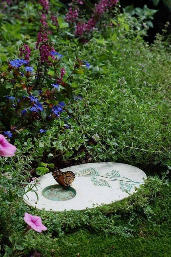 A butterfly puddler stone is the perfect addition to a butterfly habitat garden!