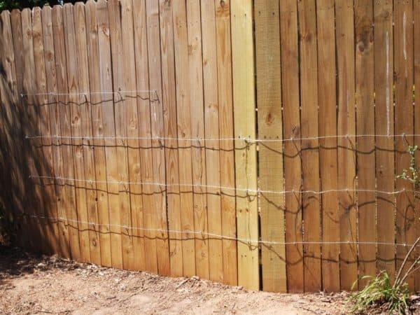 DIY invisible trellis on fence