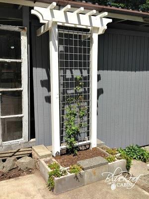 white DIY garden trellis