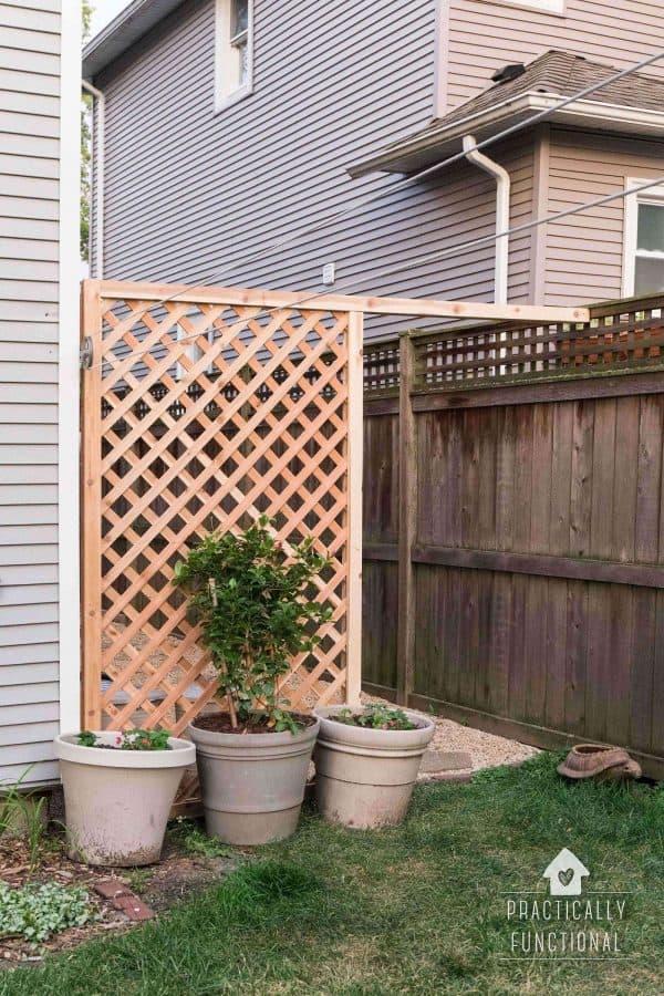 DIY trellis screen next to fence