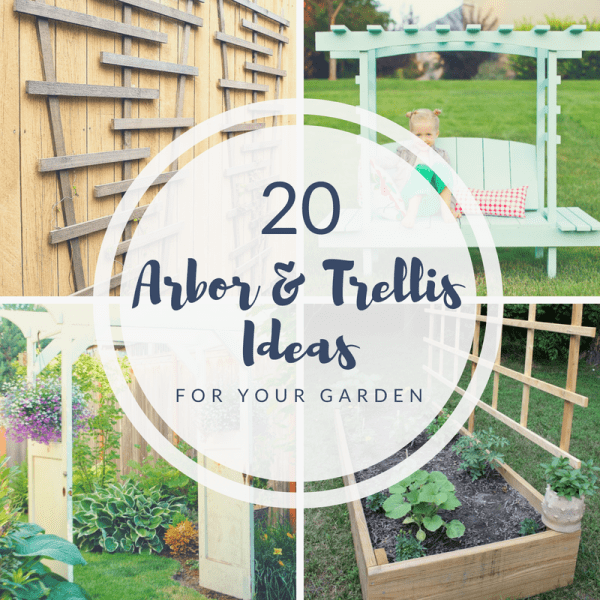20 Arbor & Trellis Ideas for your Garden