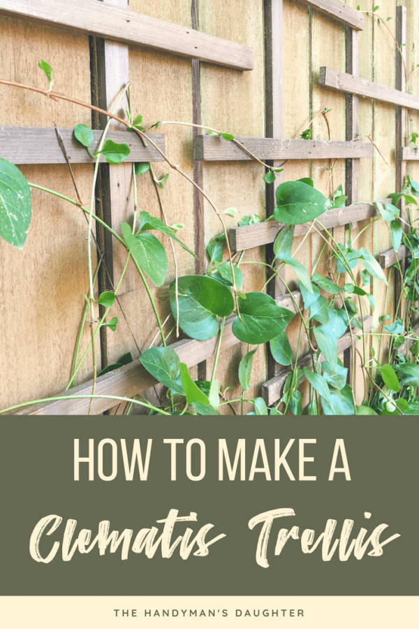 how to make a clematis trellis