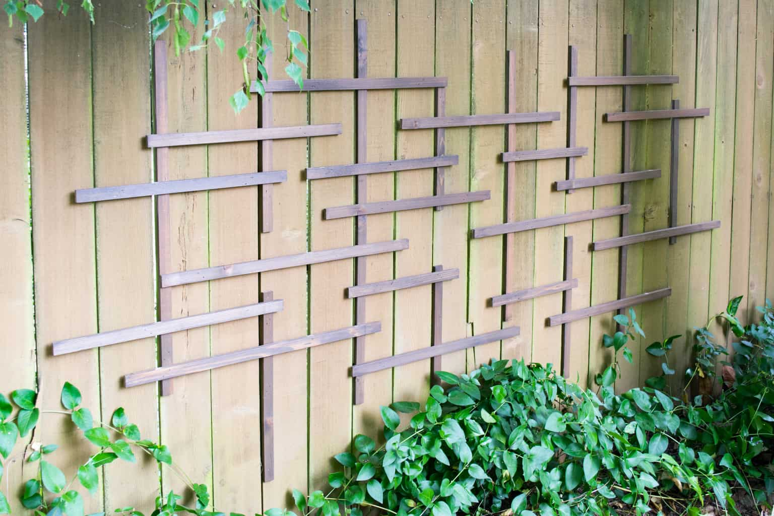 clematis trellis on fence before adding vines