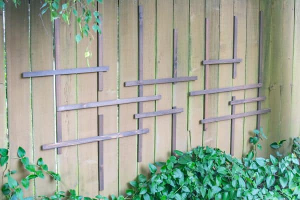 Clematis trellis being installed on a fence