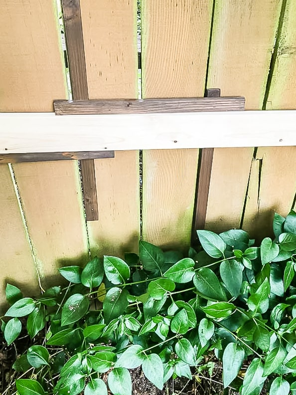 1x4 board used as spacer between slats of clematis trellis