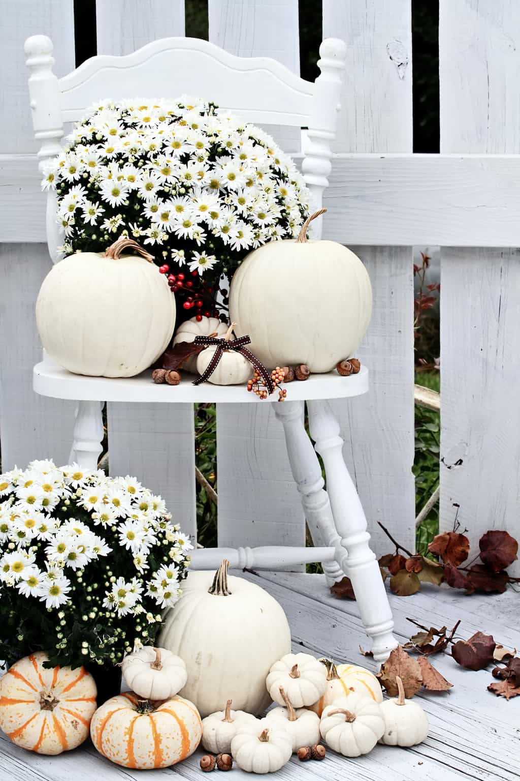 white pumpkins and white fall mums on white chair