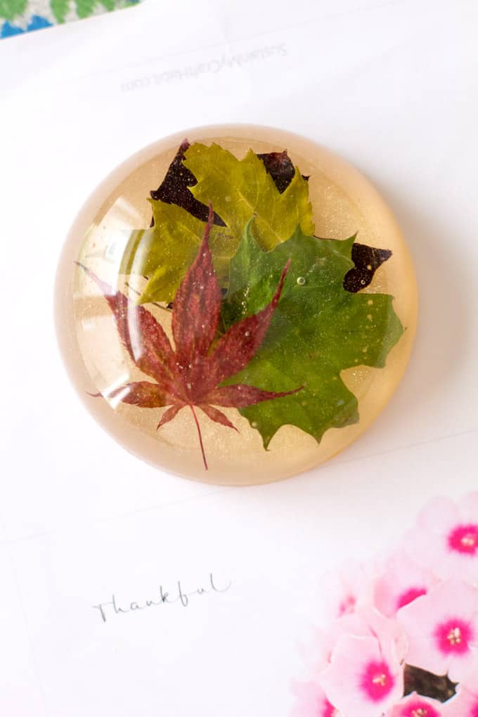 DIY desk decor - leaf resin paperweight