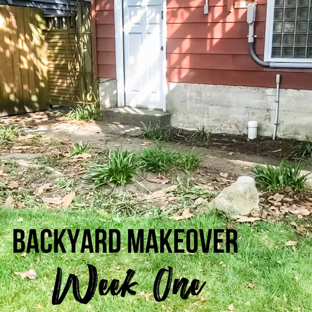 Backyard Makeover - Week One