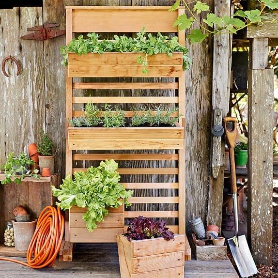 vertical planter wall