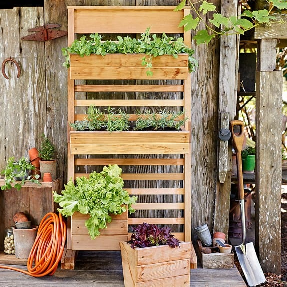 planter wall with removable planter boxes