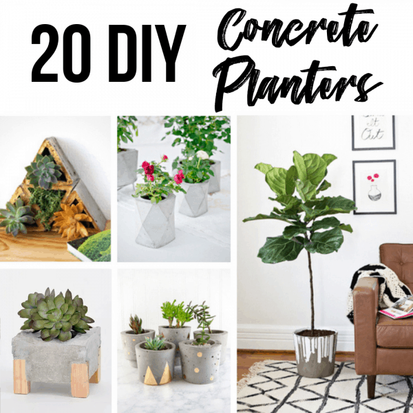 20 DIY Concrete Planters collage