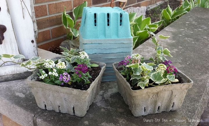 Concrete Dipped Berry Box Planters