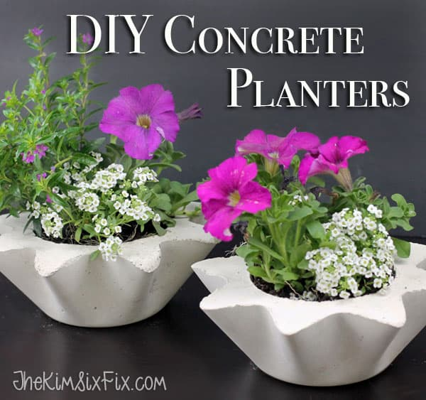 DIY Scalloped Concrete Planters