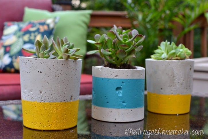DIY Painted Concrete Planters