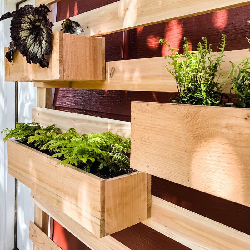 planter boxes on vertical garden wall