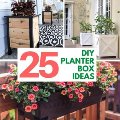 25 DIY Planter Box Design Ideas