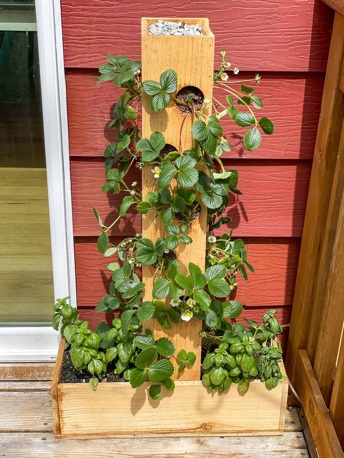 front view of strawberry planter next to sliding glass door to deck