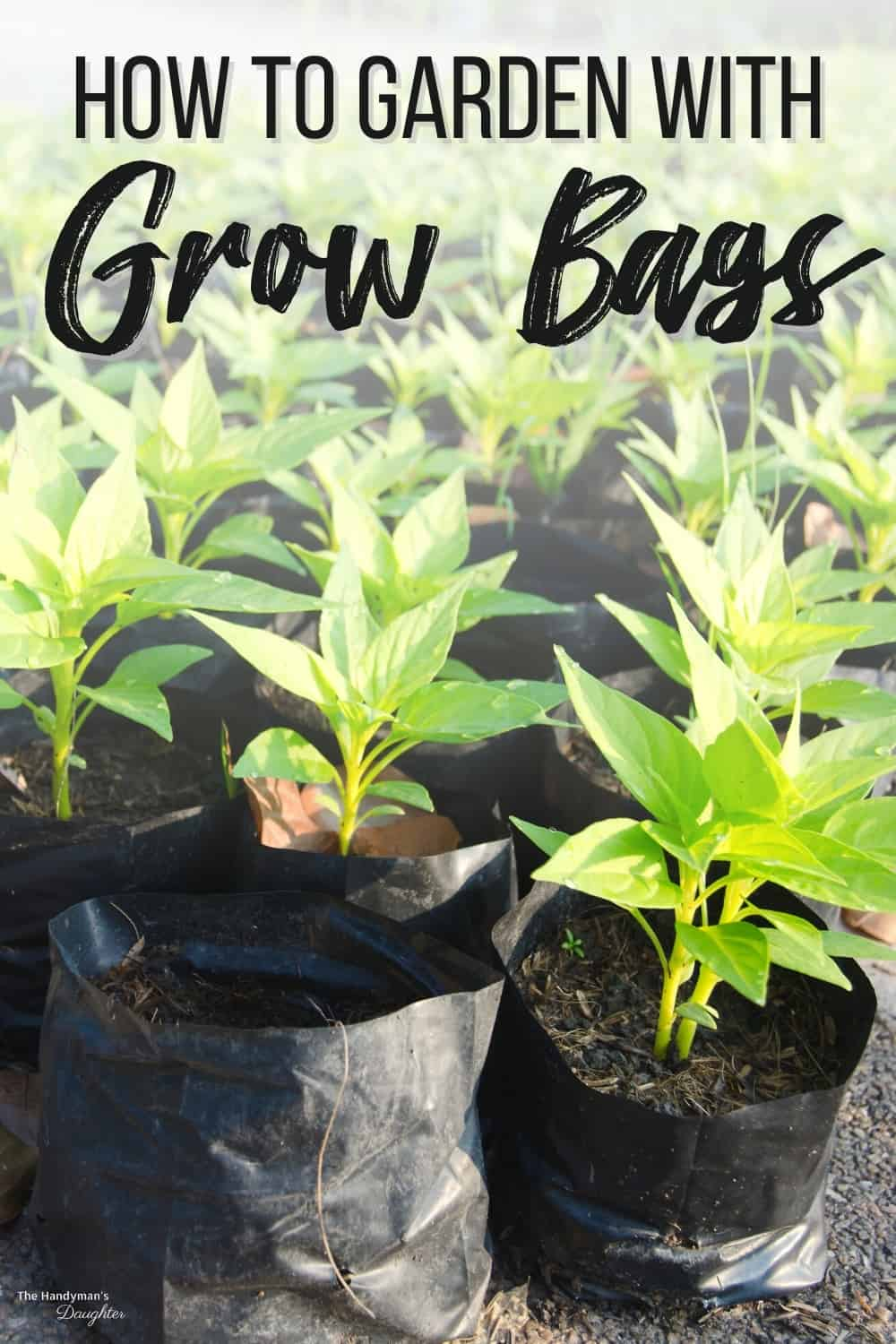 how to garden with grow bags