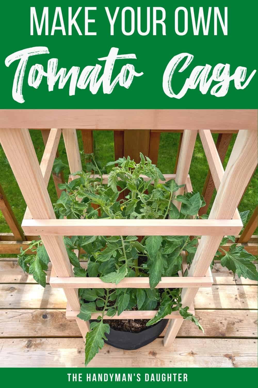 DIY tomato trellis with plans