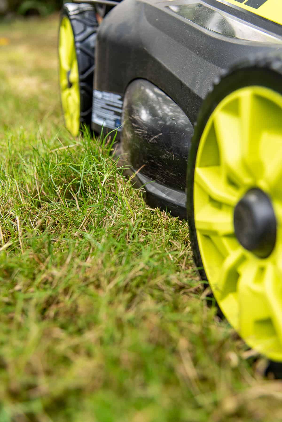 Ryobi self propelling electric lawn mower cutting tall grass
