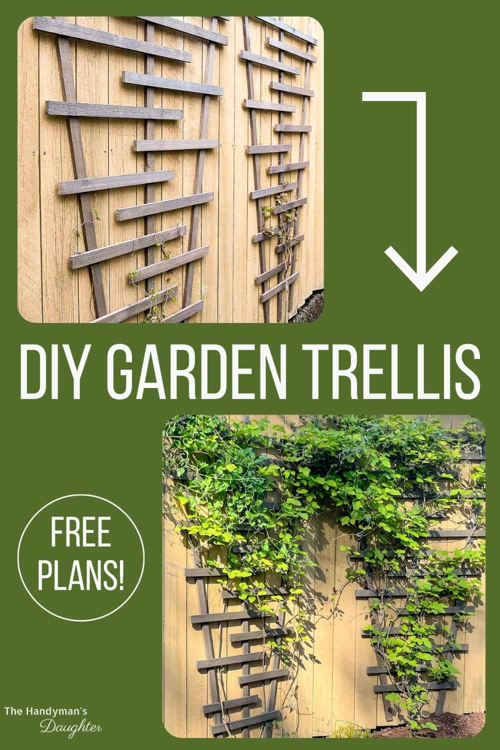 DIY garden trellis before and after
