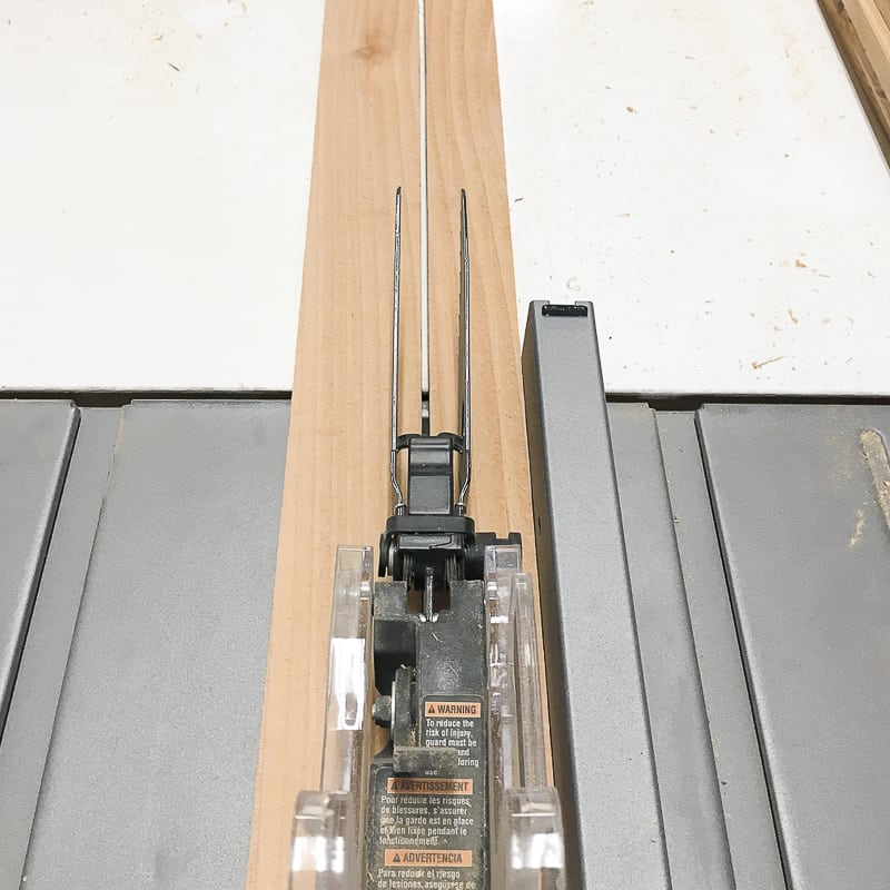cutting strips for DIY garden trellis with a table saw